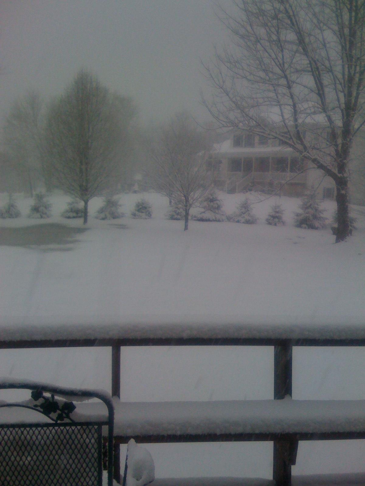 Snow Storm March 9, 2009